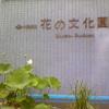 Image3890