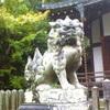 Image4589