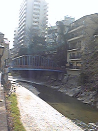 Image6504