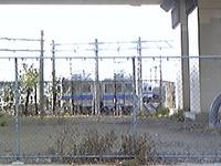 Image6517