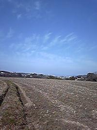 Image6552