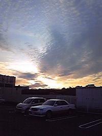 Image6716