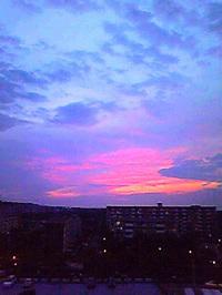 Image8309