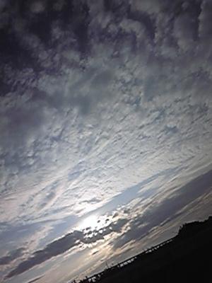 Image8648_2