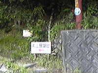 Image8959